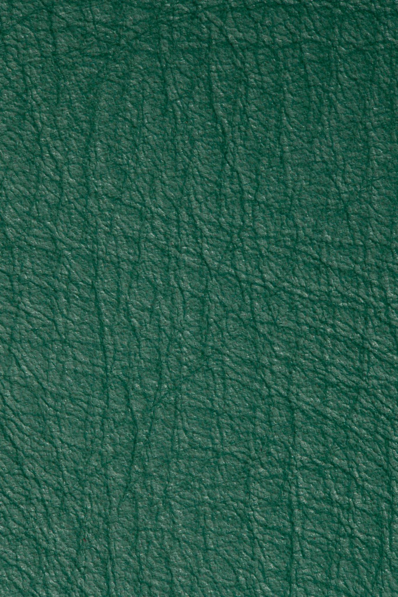Bison Emerald