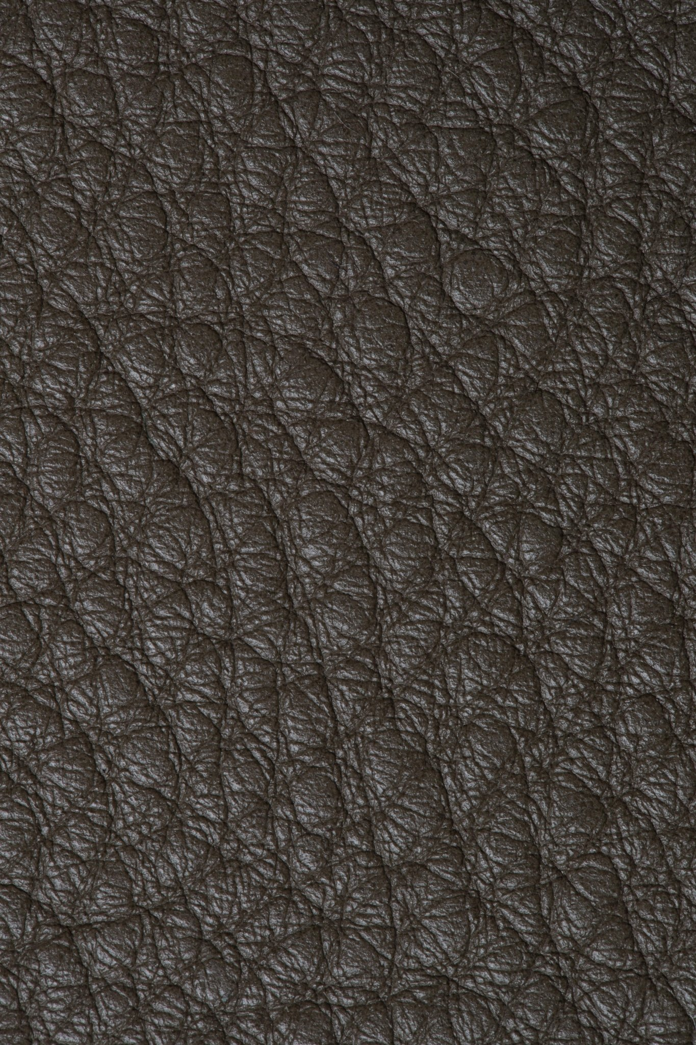 Bison Taupe
