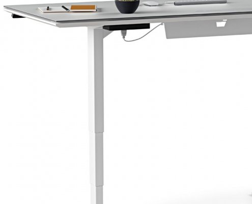 Centro Lift standing Desk 6451 BDI wire management
