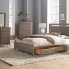 Ellison Panel Storage Bed by Whittier